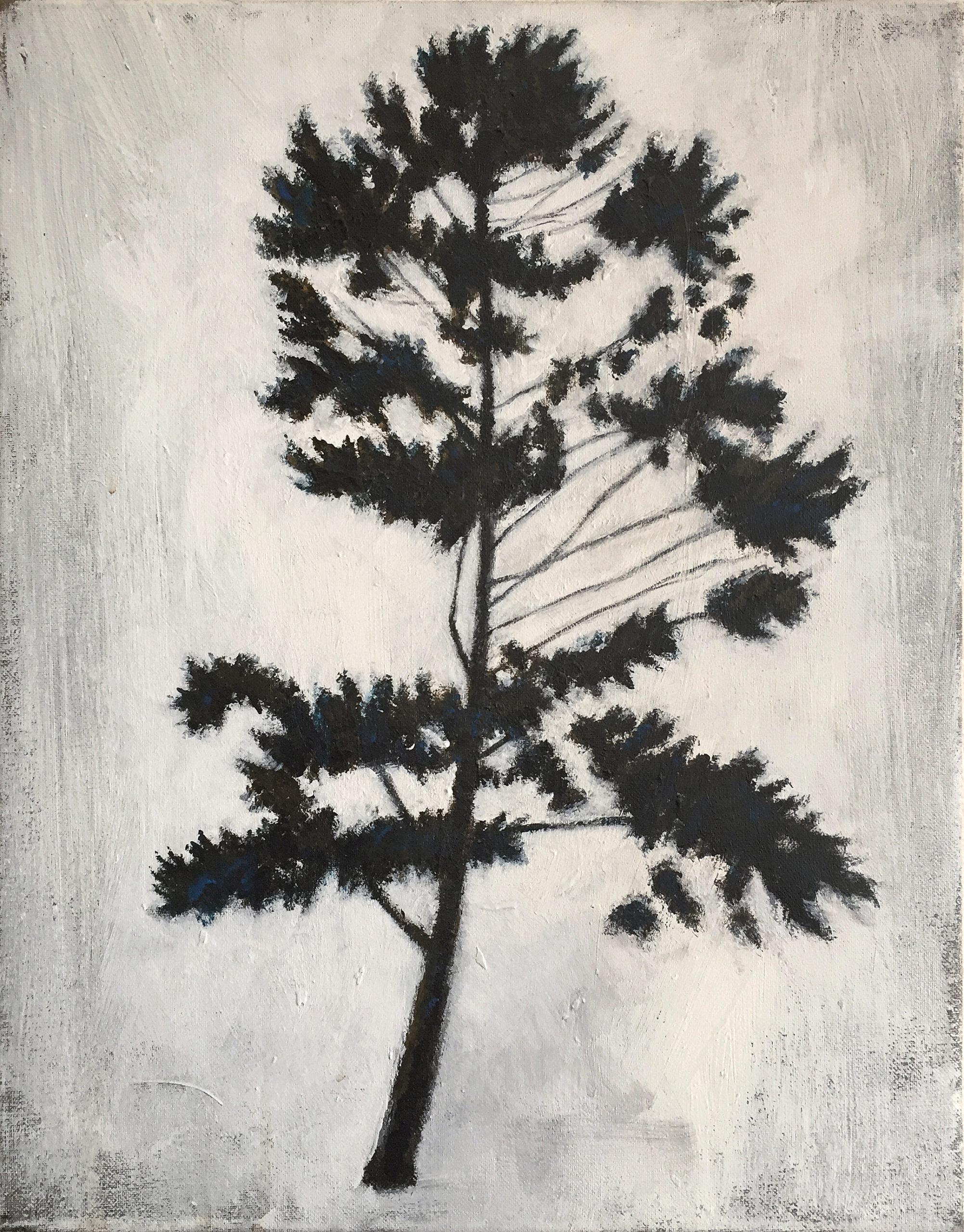 TREE_NR3