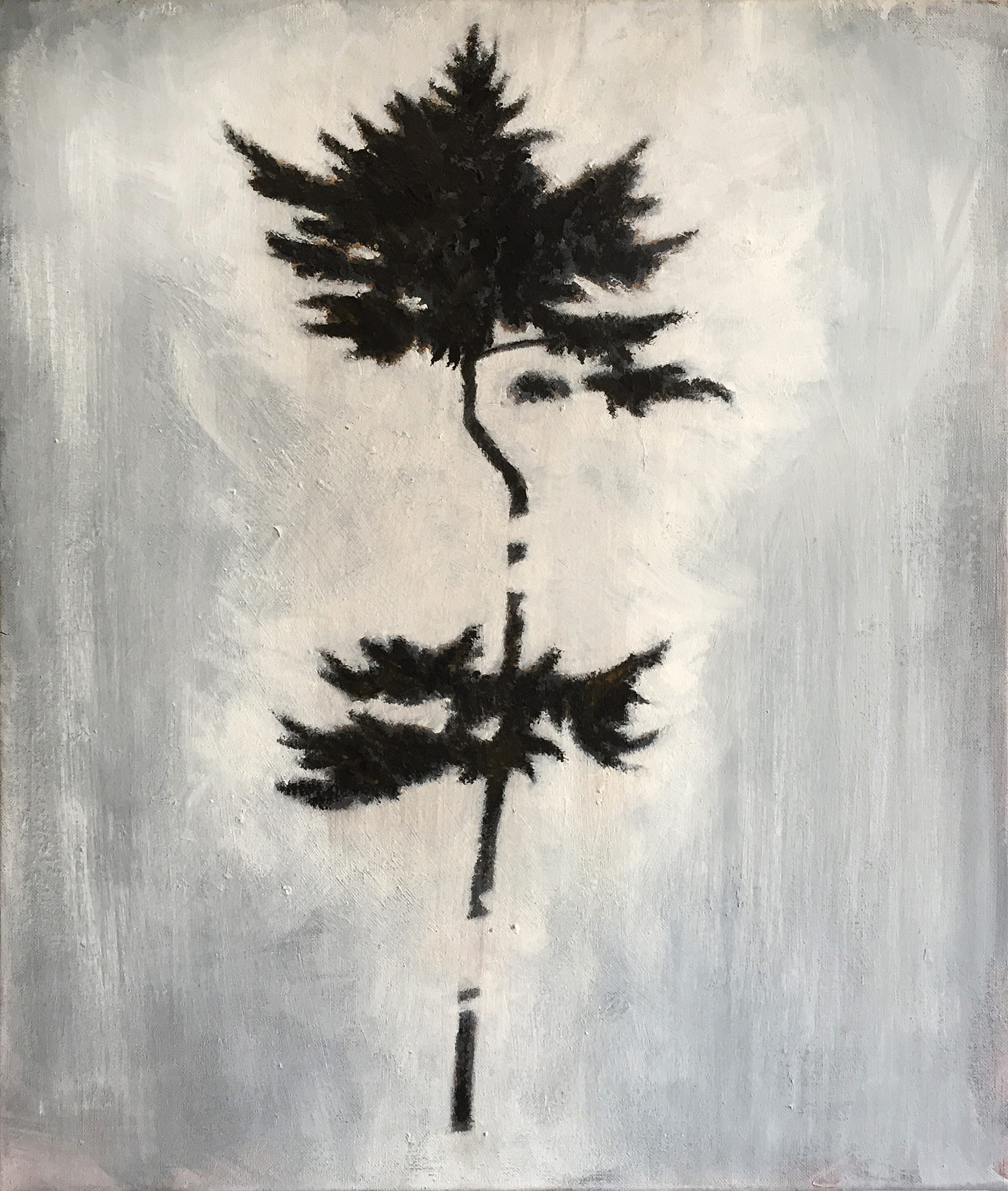 TREE_NR5