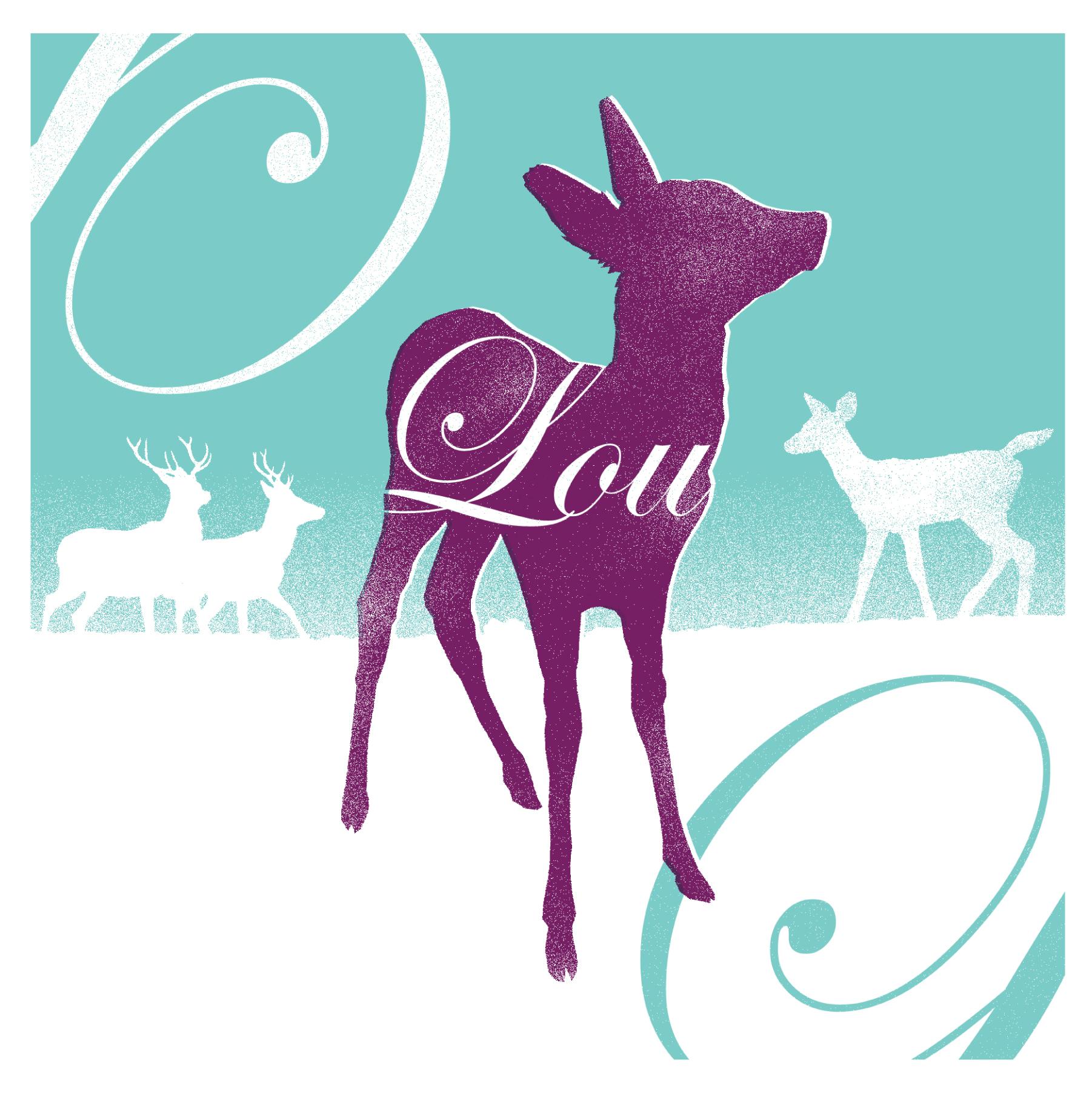 Lou-geboortekaart-front